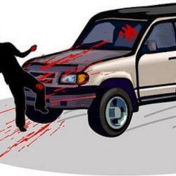 """مقتل عضو في برلمان إقليم """"هيرشبيلي"""" الصومالي بتفجير وسط مقديشو"""
