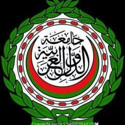 صندوق النقد الدولي يحذر من ارتفاع الدين العام في المنطقة العربية