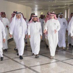 الاعتراف بمرسى ياس مارينا أبوظبي كميناء رسمي مباشر لدخول السفن الأجنبية إلى الإمارات