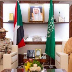 إدارة ترمب تتجاوز الكونغرس وتوافق على بيع أسلحة للسعودية