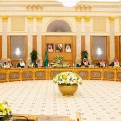 محمد بن زايد يستقبل كبير مستشاري وزارة الدفاع البريطانية للشرق الأوسط