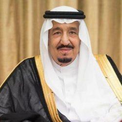 نص كلمة الرئيس السيسى فى افتتاح قمة الاتحاد الأفريقى الاستثنائية بالنيجر