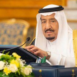 فنان العرب وأنغام على مسارح الباحة
