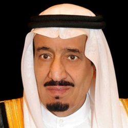 بأمر الملك.. تعيين فهد الرشيد رئيساً تنفيذياً للهيئة الملكية لمدينة الرياض بالمرتبة الممتازة