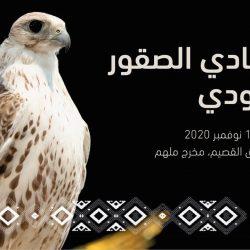 """""""السعودية"""" تتصدر دول مجموعة العشرين في مؤشرات الأمن وسلامة السكان"""
