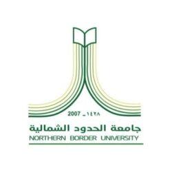 رابطة عشاق التنس بمصر تبدع في خدمة أعضائها