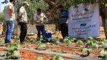 مركز الملك سلمان للإغاثة يواصل دعم مشاريع التمكين للأسر السورية في قطاع الثروة الزراعية